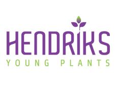 hendriks logo