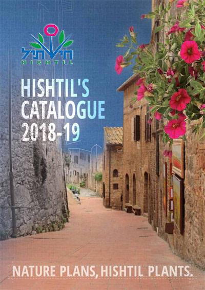 Hishtil Catalogue 2018